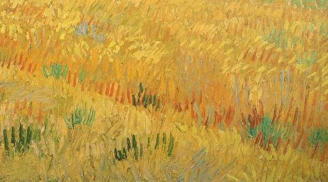 BBC Van Gogh Vid