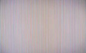Late Morning by Bridget Riley © the artist photo credit: Tate